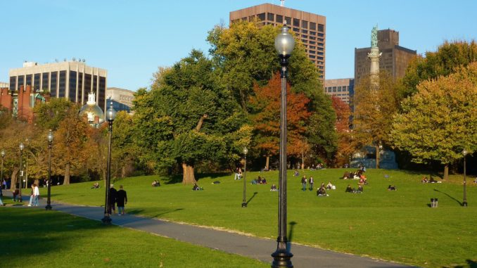 Boston Common Fall Foliage